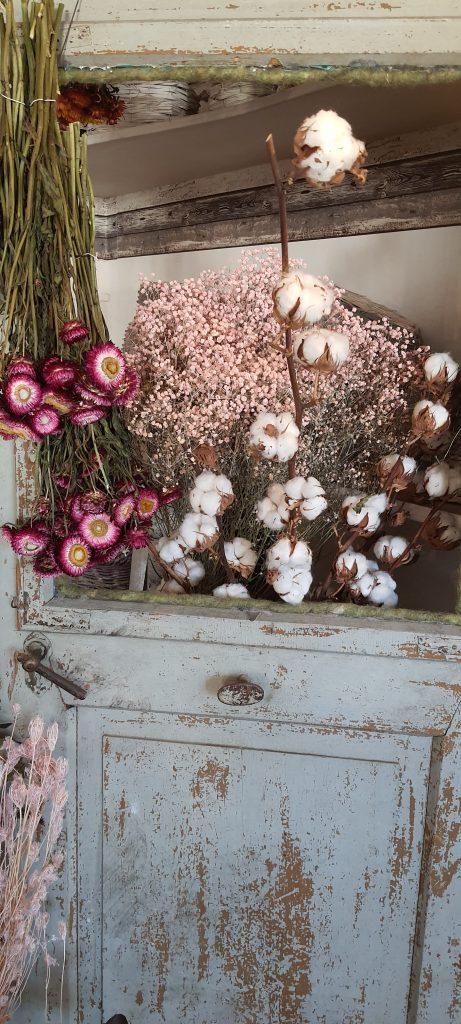 Baumwolle Strohblumen Schleierkraut